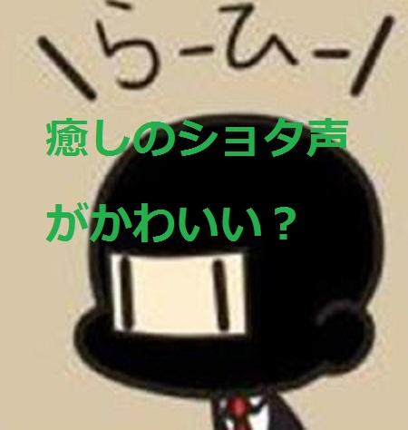ひら(実況)