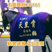 天皇賞秋2016
