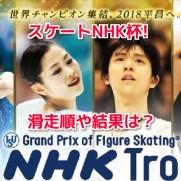 スケートNHK杯2017