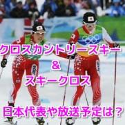 平昌オリンピッククロスカントリースキークロス