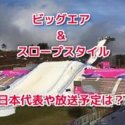 平昌オリンピックビッグエアスロープスタイル