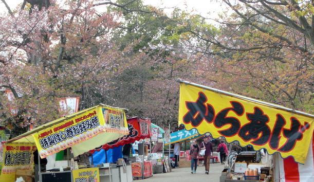 京都円山公園の桜 屋台