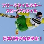 平昌オリンピックフリースタイルスキースロープスタイル