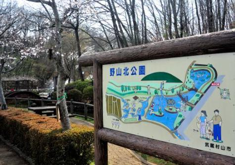 ピクニック東京公園 野山北六道山公園