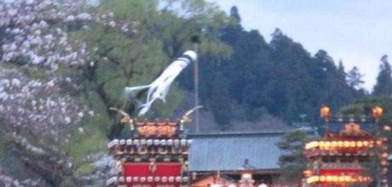 岐阜高山祭春 日程