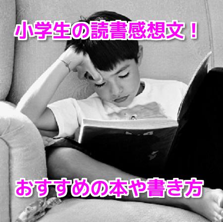 読書感想文小学生