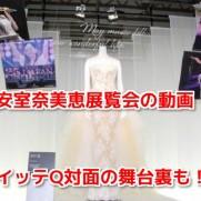安室奈美恵イモトアヤコ展覧会