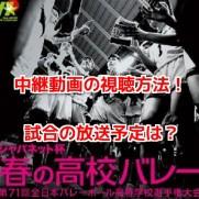 春高バレー 無料動画