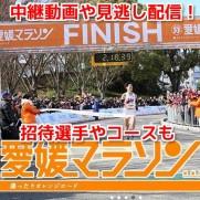 愛媛マラソン 無料動画