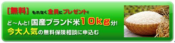 生命保険キャンペーンプレゼント4
