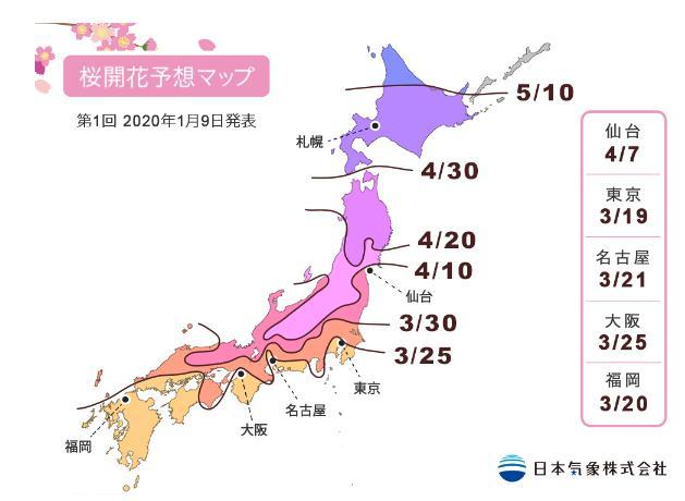 桜開花予想マップ2020年