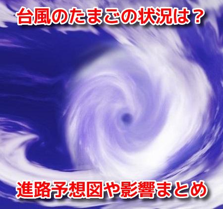 台風10号 2020 たまご 米軍 ヨーロッパ 予想図 進路 日本上陸 影響