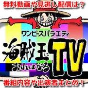 ワンピースバラエティ海賊王におれはなるTV 12月27日 無料動画