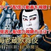 初春海老蔵歌舞伎 動画 見逃し配信