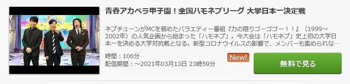 ハモネプ2021 無料動画 見逃し配信