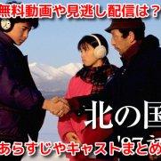 北の国から'87初恋(4月3日地上波) 無料動画