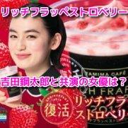 リッチフラッペストロベリーCM 女優 八木莉可子